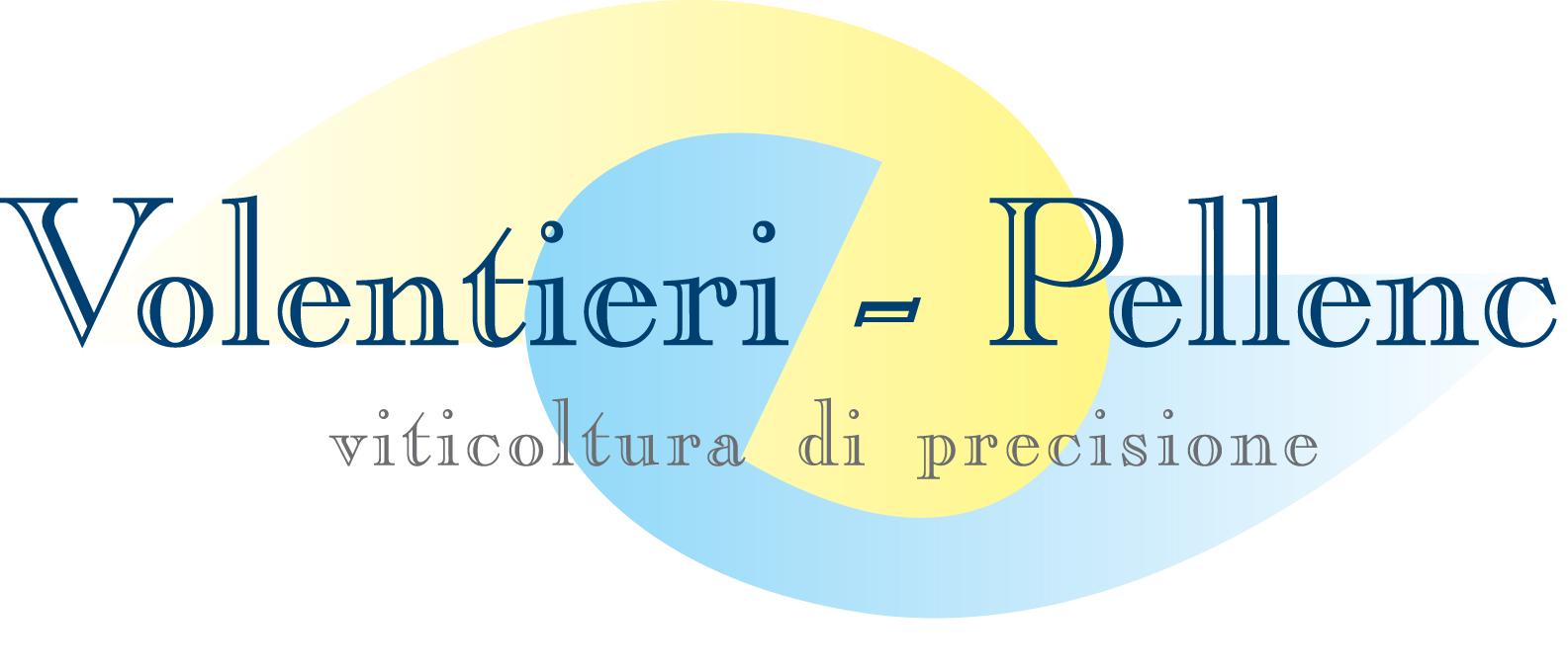 logo volentieri 2013- big